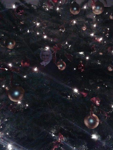 Agnes in the Christmas Tree